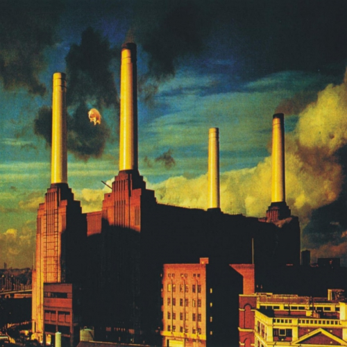 Pink-floyd-animals-1050x1050.jpg